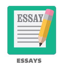 Basics of Writing An Effective Essay - Education Corner